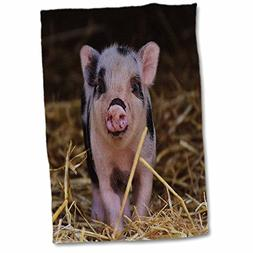 """3D Rose Sweet and Cute Baby Pig Farm Hand Towel, 15"""" x 22"""""""
