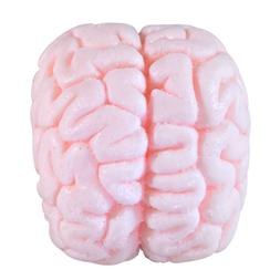 Brain Soap Bar Specimen Bath Body Shower Beauty Horror Hallo