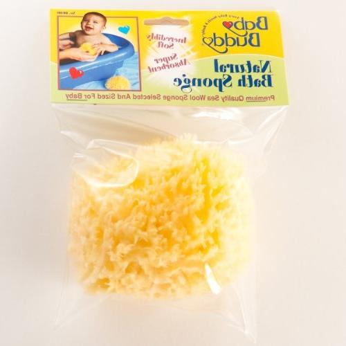 Sponge - 48 count Case Pack